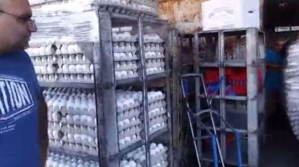 השמדת ביצים נגועות. צילום מסך, חדשות ערוץ 2