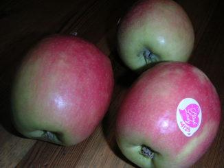 תפוחי פינק ליידי, צילום: zozza ויקימדיה