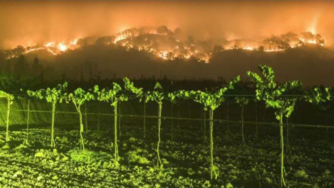 שריפה הכרמים בסונומה ונאפה בקליפורניה (צילום מסך)