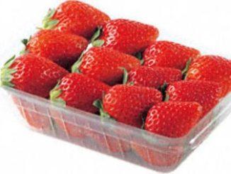 תותים. צילום מסך