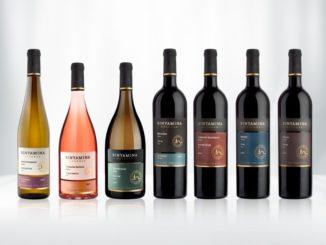 """סדרת יינות יקב בנימינה רזרב בעיצוב חדש. צילום: יח""""צ"""