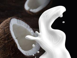 חלב קוקוס. צילום אילוסטרציה