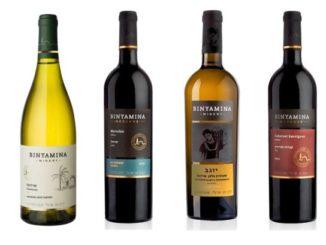 יינות יקב בנימינה לחג