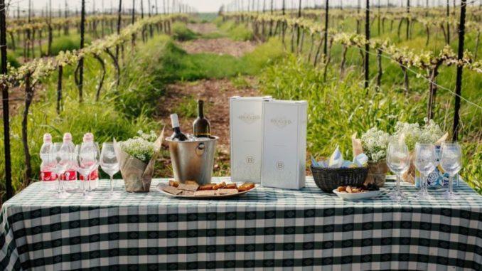 סיור ג'יפים וטעימות יין בכרמי יקב ברבדו. צילום: חן ראובן