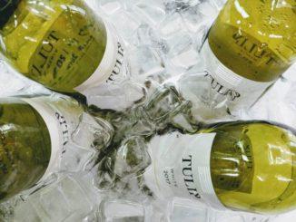 יינות טוליפ. צילום: נטלי סאיגו